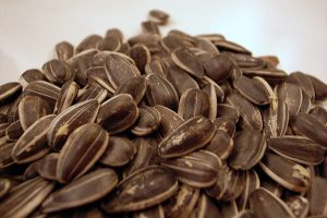 Seeds for Health